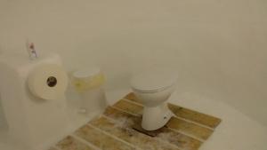 pic 9 toilet